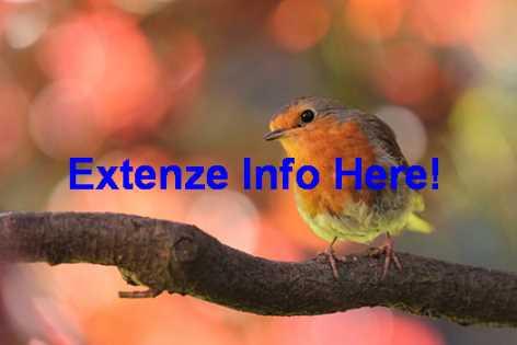 Extenze Pill Instructions
